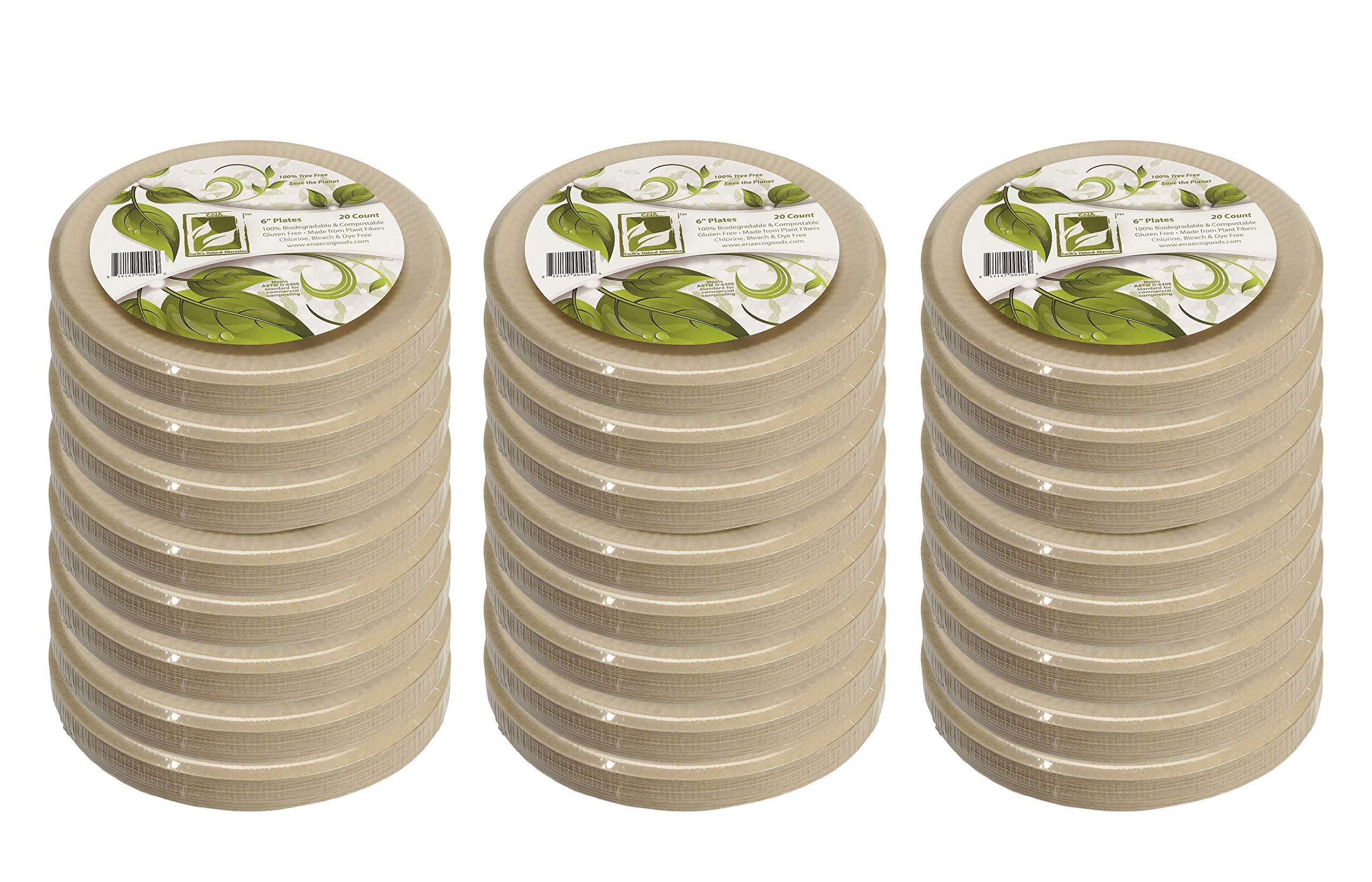 Earth's Natural Alternative ECOP001-480CSE Eco-Friendly, Compostable Plant Fiber Plate, 480 Count