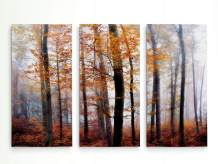 Renditions Gallery Lost in The Forest 3 Panel Wall Art for Home, Office, Bedroom 40X60