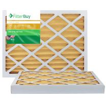 FilterBuy 16x30x2 MERV 11 Pleated AC Furnace Air Filter, (Pack of 2 Filters), 16x30x2 – Gold