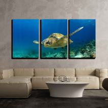 "wall26 3 Piece Canvas Wall Art - Green Sea Turtle Swimming Underwater in Deep Ocean/Sea - Modern Home Decor Stretched and Framed Ready to Hang - 16""x24""x3 Panels"