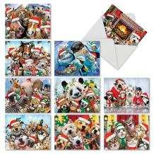 Merry Christmas To Zoo - 10 Boxed Christmas Cards Bulk (4 x 5.12 Inch) - Pet, Wildlife Xmas Animal Note Cards with Envelopes - Great for Kids, Children M6652XSG