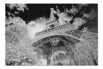 Paris, France - Black & White View of the Eiffel Tower 9020224 (19x27 Premium 1000 Piece Jigsaw Puzzle, Made in USA!)