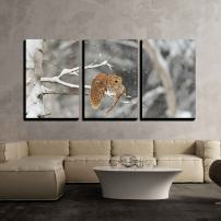 "wall26 - 3 Piece Canvas Wall Art - Flying Tawny Owl in Winter Time Whne is Snowing - Modern Home Decor Stretched and Framed Ready to Hang - 24""x36""x3 Panels"