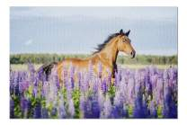 Arabian Horse Galloping in Lupine Flowers 9002774 (19x27 Premium 1000 Piece Jigsaw Puzzle, Made in USA!)
