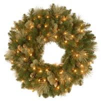 National Tree 24 Inch Carolina Pine Wreath with 50 Battery Operated LED Lights (CAP3-306-24WB-1)