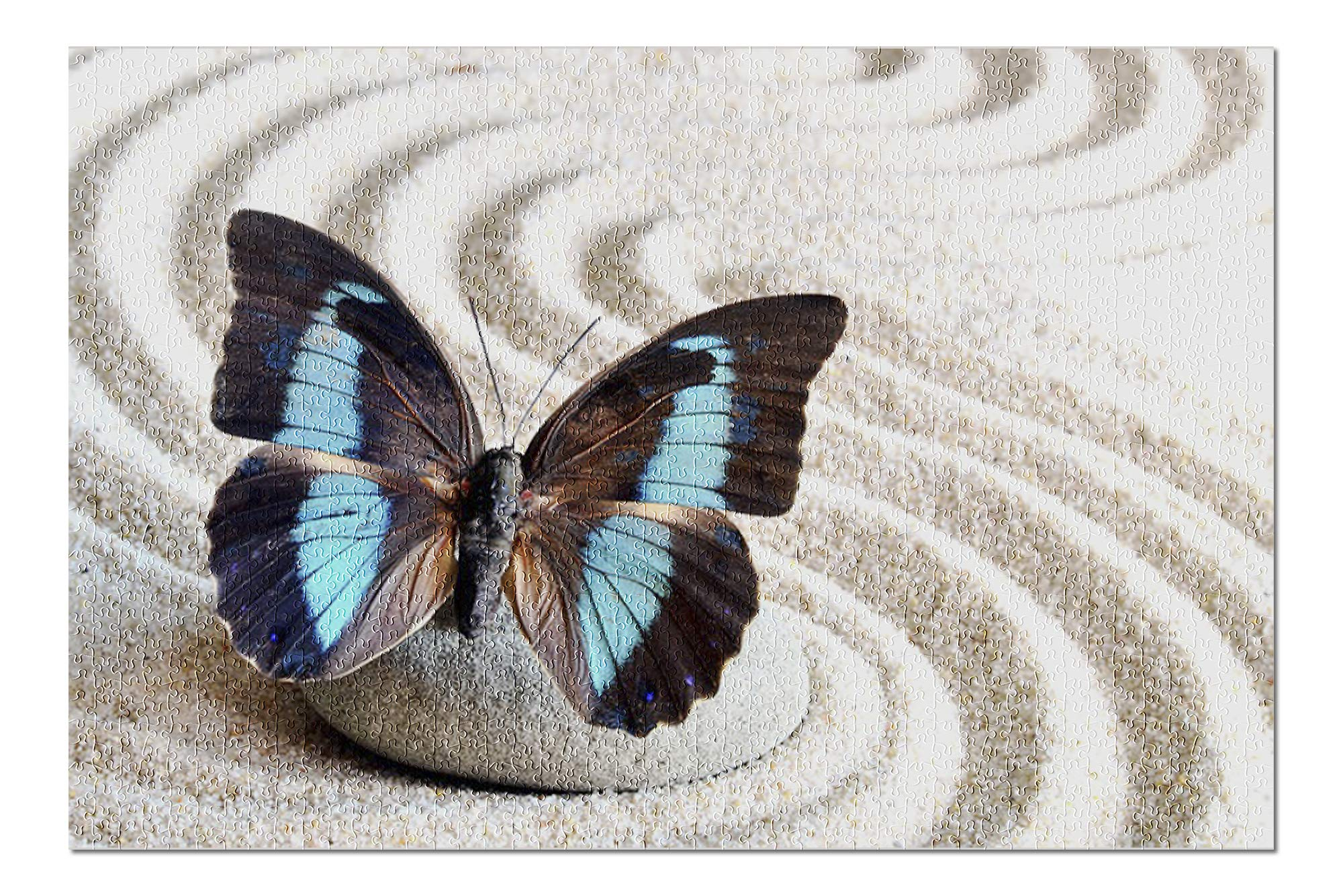 Blue Butterfly on Zen Rock and Sand 9000018 (19x27 Premium 1000 Piece Jigsaw Puzzle, Made in USA!)