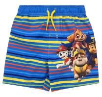 Dreamwave Toddler Boys Swim Bathing Suit