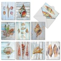 10 Boxed 'Seashell Driftwood' Note Cards with Envelopes - Assorted Blank Greeting Cards - Stationery Notecard Set for All Occasions - Weddings, Birthdays, Thank You 4 x 5.12 inch AM6118OCB-B1x10
