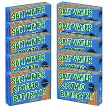 10 PackSalt Water + Potato + Fruit Battery STEM Kit for boys and girls age 8-10 to learn chemistry & electronics with vinegar, soda, lemons, and more. Great school or summer camp activity!