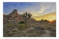 Joshua Tree National Park, California - Sunrise (Premium 1000 Piece Jigsaw Puzzle for Adults, 20x30, Made in USA!)