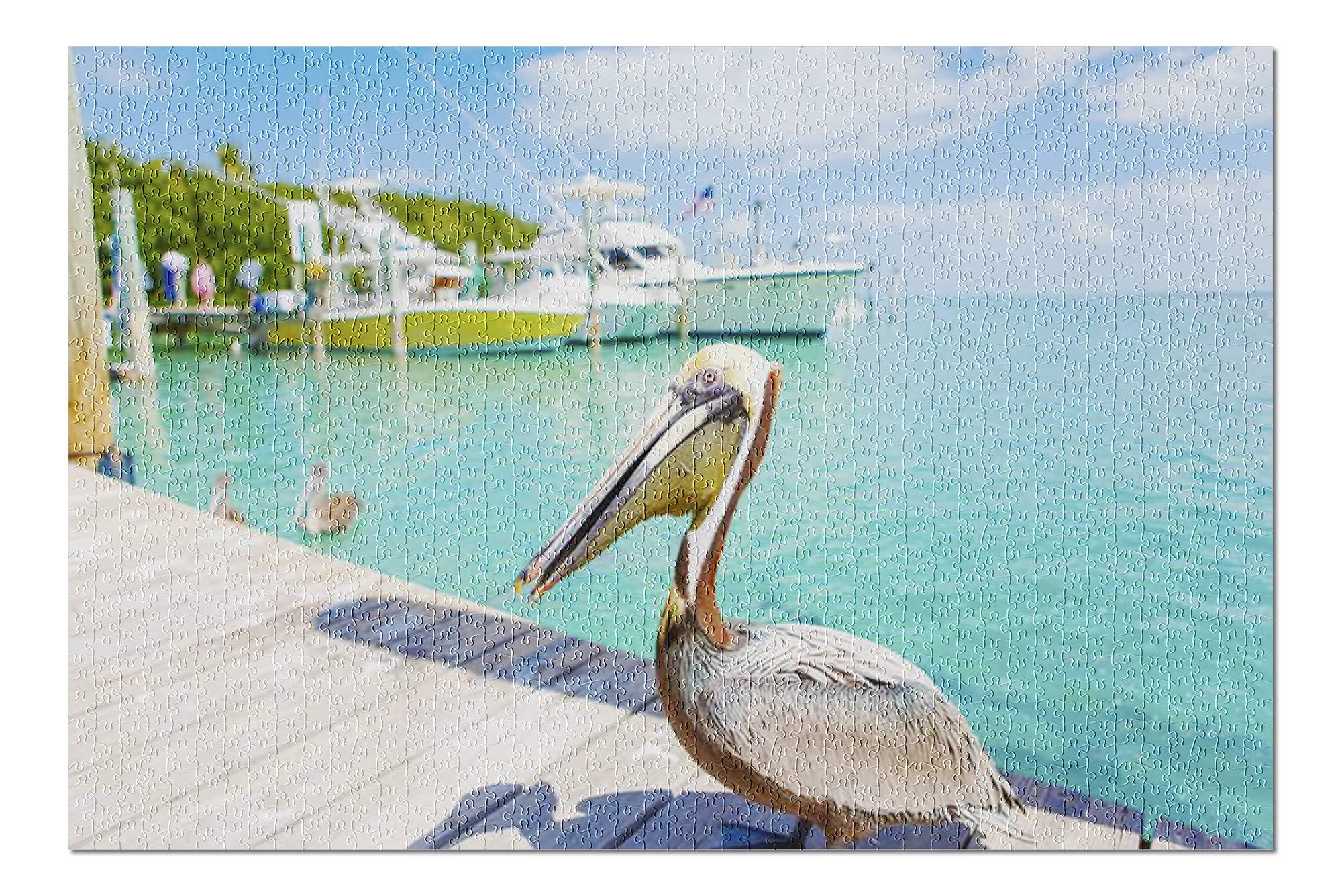 Big Brown Pelicans in Islamorada, Florida Keys 9021304 (Premium 1000 Piece Jigsaw Puzzle for Adults, 19x27, Made in USA!)
