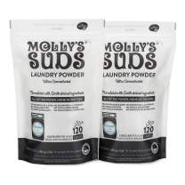 Molly's Suds Unscented Laundry Detergent Powder, Bundle of 2, 240 Loads Total, Natural Laundry Soap for Sensitive Skin