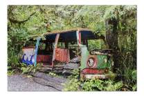 Abandoned Gutted VW Camper Van with Psychedelic Paint in a Forest 9016263 (19x27 Premium 1000 Piece Jigsaw Puzzle, Made in USA!)