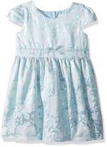 The Children's Place Baby Girls' Mint Jacquard Dress