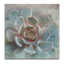Renditions Gallery Gallery Wrapped Canvas Wall Art, 16x16, Pastel Succulent II