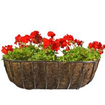 CobraCo Black 24-Inch Canterbury Horse Trough Planter HTCB24-B