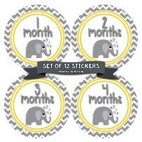 Months In Motion Gender Neutral Monthly Baby Milestone Stickers - Onesie Month Sticker - Infant Photo Prop for First Year - Shower Gift - Newborn Keepsakes - Unisex Boy or Girl - Elephant - Style 382