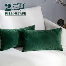 NANPIPER Set of 2 Velvet Soft Decorative Cushion Throw Pillow Covers 12x20 Inch/30x50 cm Cozy Solid Velvet Square Pillowcase Cushion Covers Olive Green for Couch and Bed