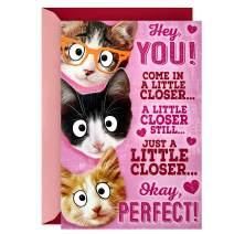 Hallmark Pop Up Valentines Day Card (Cat Group Hug)