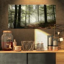 Design Art PT9835-32-16 Light in Dense Fall Forest with Fog Landscape Canvas Art Print, 32x16, Green