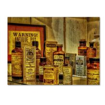Vintage Medicines  by Lois Bryan, 14 by 19-Inch Canvas Wall Art