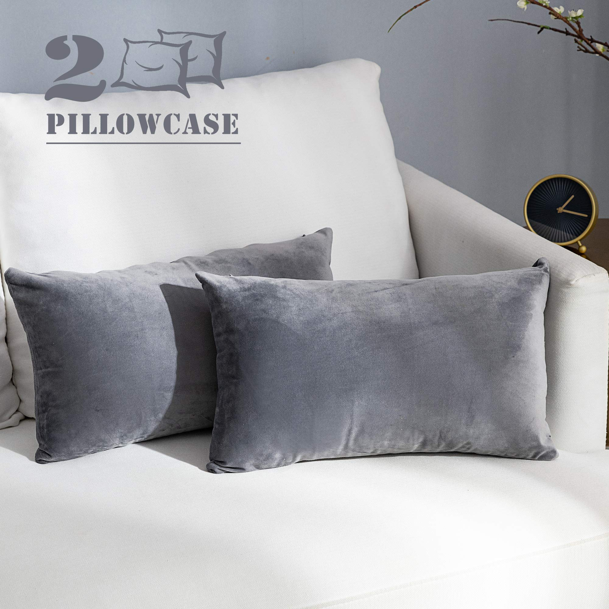 NANPIPER Set of 2 Velvet Soft Decorative Cushion Throw Pillow Covers 12x20 Inch/30x50 cm Cozy Solid Velvet Square Pillowcase Cushion Covers Grey for Couch and Bed