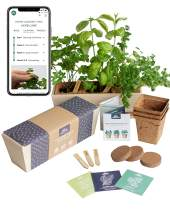 Herb Garden Starter Kit | Free Web app Guide | Beginner Friendly Indoor Windowsill Kitchen Planter | Potting Mix, Pots, Markers, Seeds