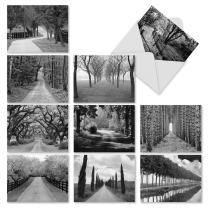 Tree Lines' Boxed Set of 10 Thank You Cards with Envelopes, Gratitude Cards in Black and White Photography 4 x 5.12 inch, Black and White Trees Thank You Notes for Friends and Family M2313