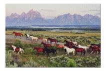 Wild Horses and Sunrise (Premium 1000 Piece Jigsaw Puzzle for Adults, 20x30, Made in USA!)