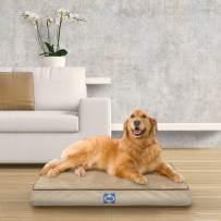 Sealy Ultra Plush Dog Bed - Orthopedic Foam pet Bed