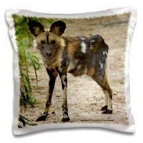 3dRose pc_187885_1 African Wild Dog, Painted Dog, Conservation Project, Zimbabwe, Africa Pillow Case, 16 x 16