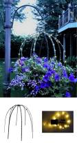 Scroll Trellis Topiary Frame and Indoor/Outdoor Solar LED String Lights with a Battery Backup (1 Green, 1 Set Warm White Solar Lights)