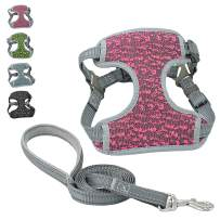 risdoada No Pull Dog Harness with Leash, Soft Breathable Mesh Puppy Chest Harness, Step-in Pet Vest Harness for Small Medium Large Dogs