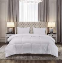Blue Ridge Home Fashions Microfiber Down Alternative All Season Comforter-Hypoallergenic Polyester Fill, Full/Queen, White