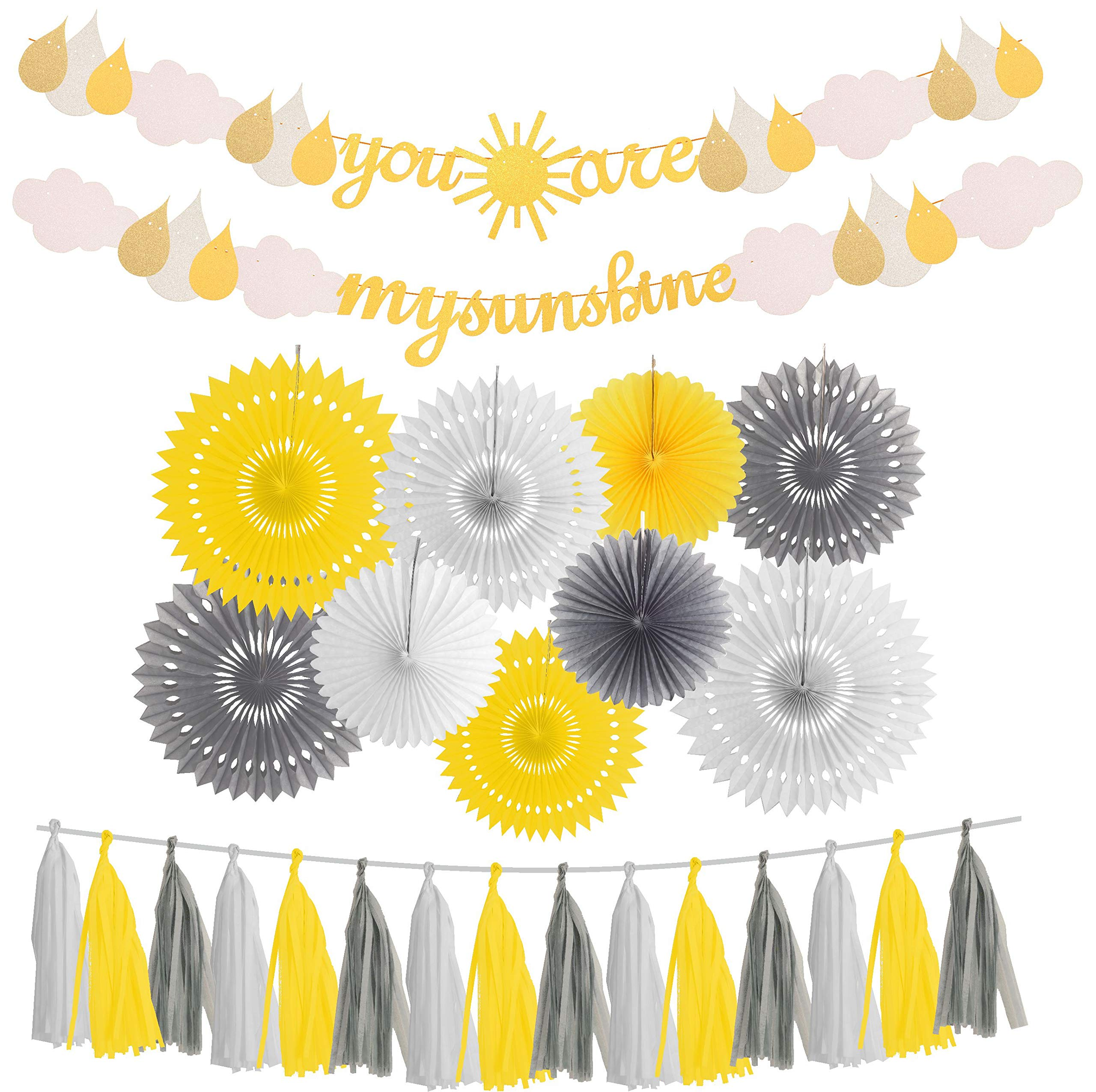 You are My Sunshine Party Supplies, You are my Sunshine Party Decorations, You Are My Sunshine Banners, Sunshine Party Decorations for Baby Shower Party, Gender Reversal Baby Shower, Wedding Party, Bi