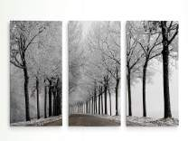 Renditions Gallery Winter Curve 3 Panel Wall Art for Home, Office, Bedroom, 40X60