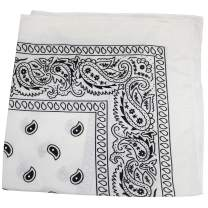 Qraftsy 48 Pack X Large Paisley 100% Cotton Double Sided Bandanas 27 x 27 inches - Bulk Wholesale