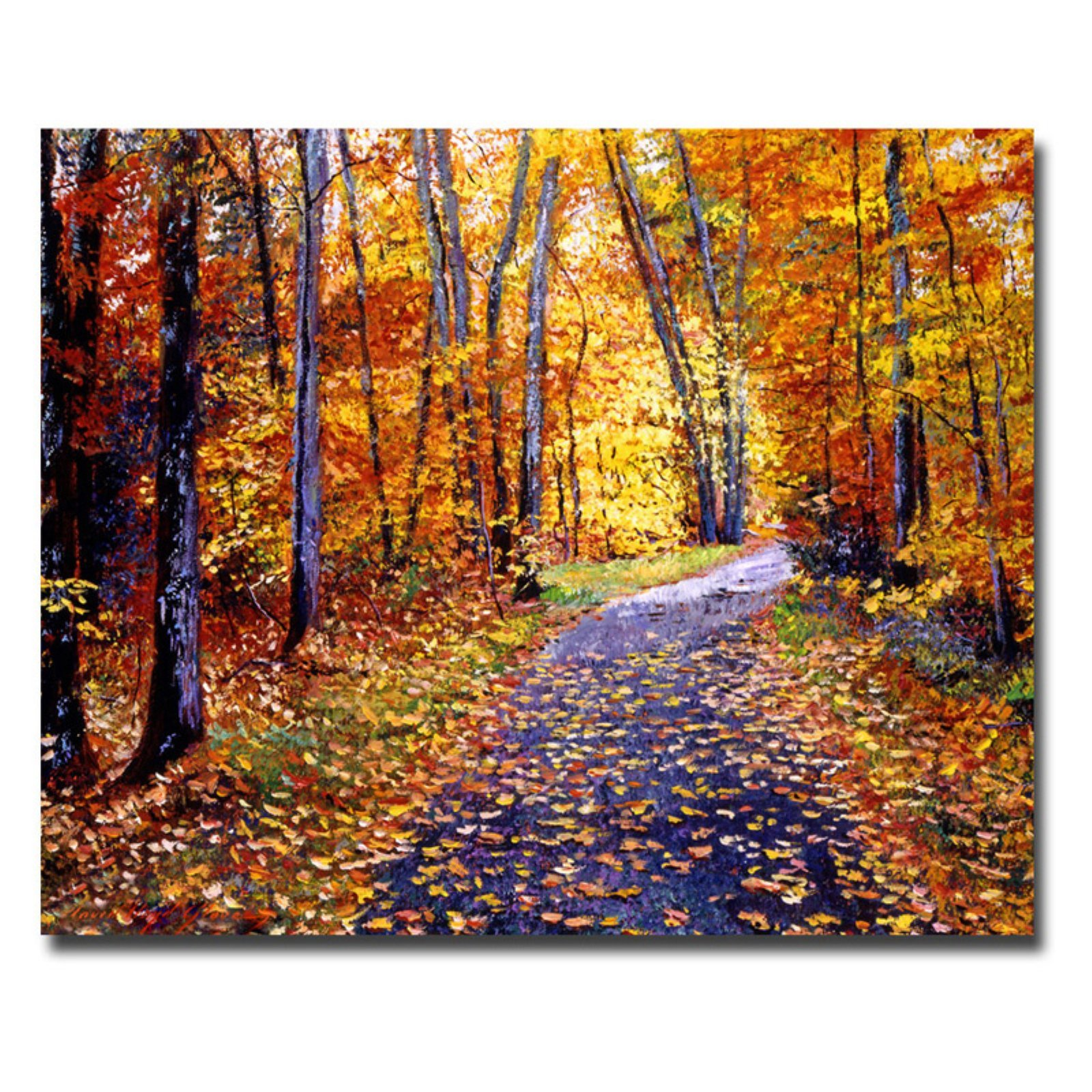 Leaf Covered Road by David Lloyd Glover, 18x24-Inch Canvas Wall Art
