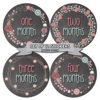 Months in Motion Baby Monthly Stickers - Baby Milestone Stickers - Newborn Girl Stickers - Month Stickers for Baby Girl - Baby Girl Stickers - Newborn Monthly Milestone - Floral Chalkboard - Style 392