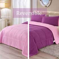 Exclusivo Mezcla Lightweight Reversible 2-Piece Comforter Set for All Seasons, Down Alternative Comforter with 1 Pillow Shame, Twin Size, Purple Pink