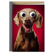 Hallmark Shoebox Funny Anniversary Card, Valentines Day Card, Love Card (Googly Eye Dog)