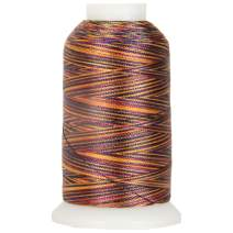 Threadart Variegated Polyester Embroidery Thread - 40wt - 1000m - 25 Colors Available - No. 18 - Arabian Nights