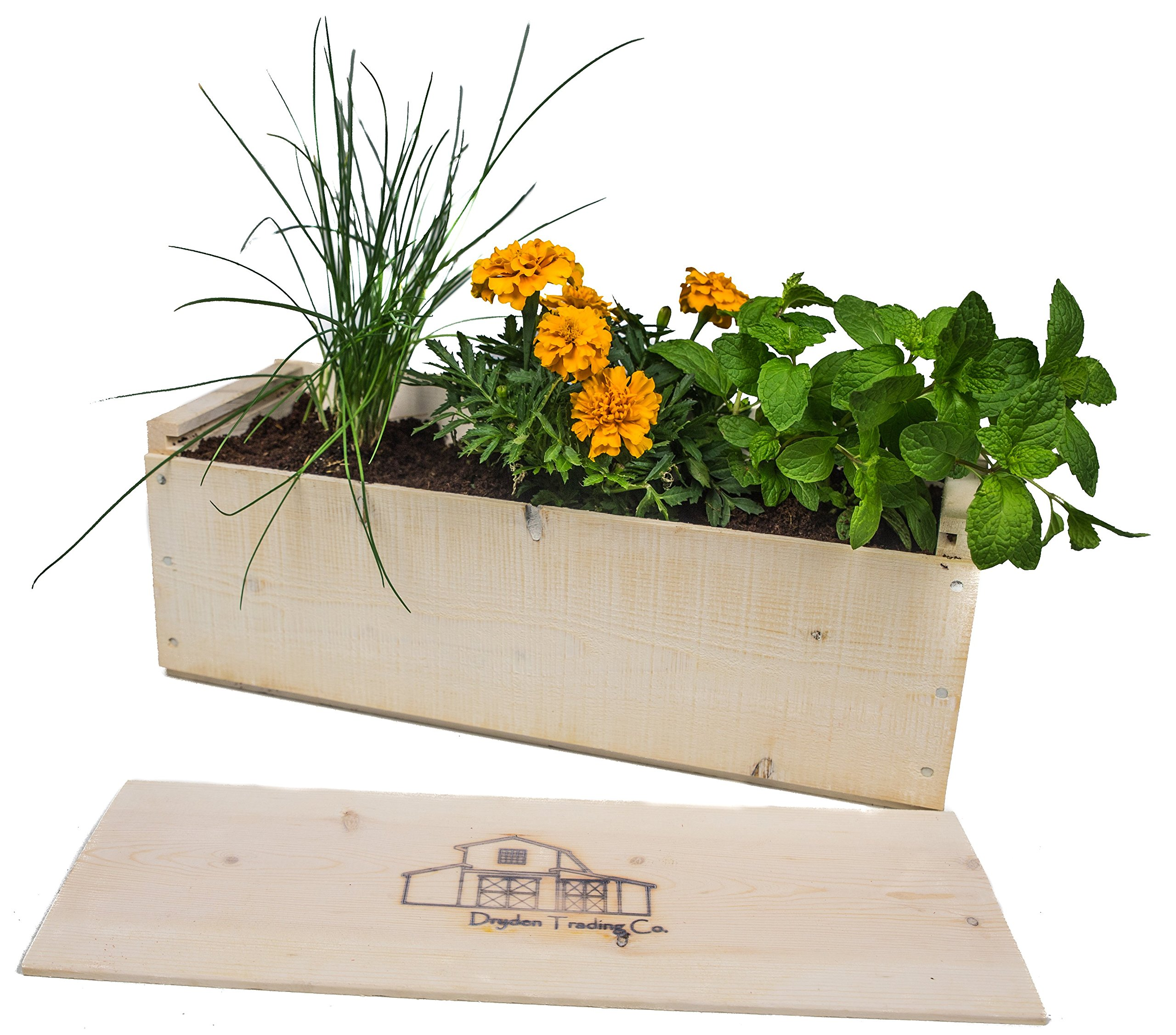 Indoor Herb Garden Planter Box Kit with Basil, Cilantro, Oregano, Parsley, Dill Seeds and Soil - White