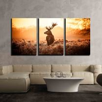 """wall26 - 3 Piece Canvas Wall Art - Red Deer in Morning Sun - Modern Home Decor Stretched and Framed Ready to Hang - 16""""x24""""x3 Panels"""