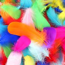 HaiMay 450 Pieces Colorful Feathers for Crafts Wedding Home Party Decorations, 3-5 Inches 10 Colors Craft Feathers