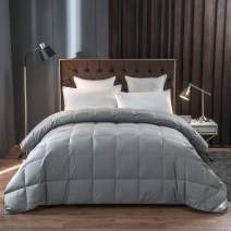 Eastwarmth Luxury Goose Down Comforter Blanket Duvet Insert Grey Color Warm Lightweight Bedding 750+ Filling Power 100% Organic Cotton King/Cal King