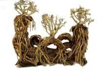 Aqualexs Nano Aquarium Bonsai Driftwood (Model #4)