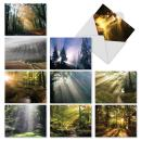 "10 Thank You Cards with Envelopes (4"" x 5 ¼"") - 'Shining Through' Stationery with Stunning Sunlit Landscape Themes - Breathtaking Note Cards for Weddings, Baby Showers, Holidays #M1735TY"