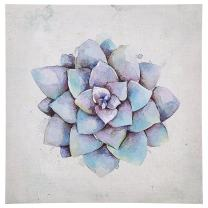 "Stone & Beam Modern Blue and Purple Succulent Print Wall Art Décor on Canvas, 30"" x 30"""
