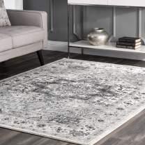 nuLOOM Vonda Fancy Persian Area Rug, 8' x 10', Grey